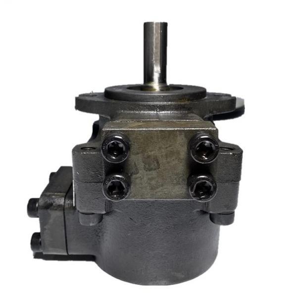 Atos PVL-316/50 Vane Pumps #1 image