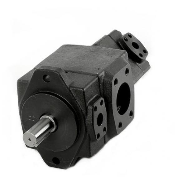 Yuken PV2R3-116-L-RAL-31 Double Vane Pumps #1 image