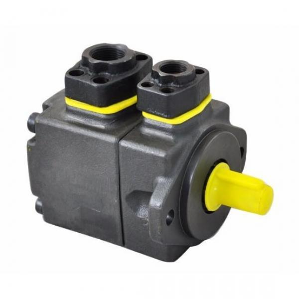 Yuken PV2R12-25-47-L-RAA-40 Double Vane Pumps #3 image